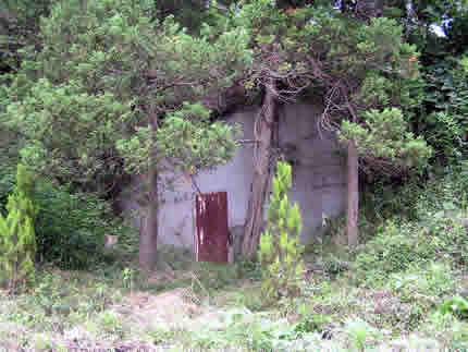 秋水崖の貯蔵庫跡